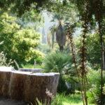 Jardin d'Australie du Domaine du Rayol