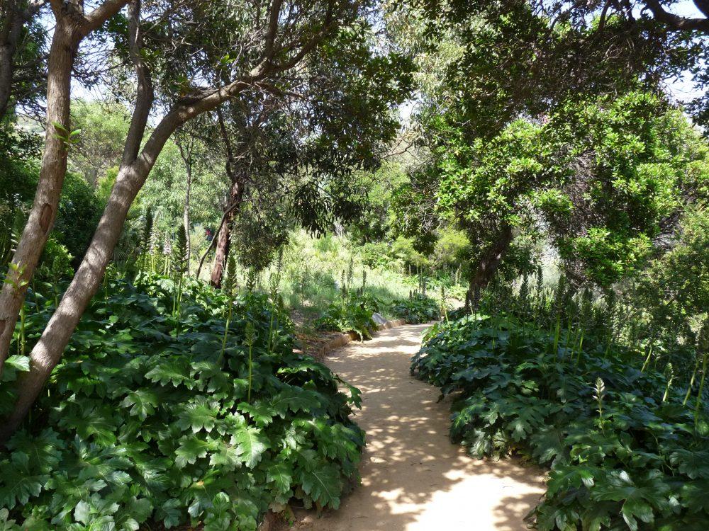 La restauration des sentiers du Jardin