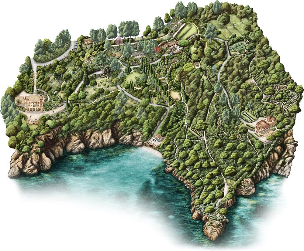 Domaine Du Rayol Le Jardin Des Mediterranees