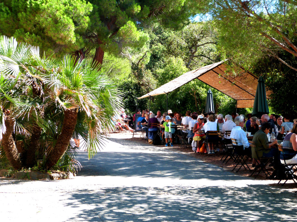 Le caf des jardiniers domaine du rayol for Jardins de jardiniers
