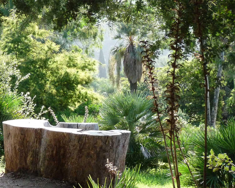 Un jardin de concepts - Domaine du Rayol