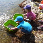 activite-familles-les-pieds-dans-l-eau-domaine-du-rayol