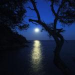 Balade-nocturne-domaine-du-rayol