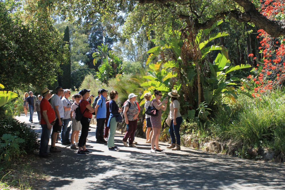 Visites Guidees Quotidiennes Domaine Du Rayol