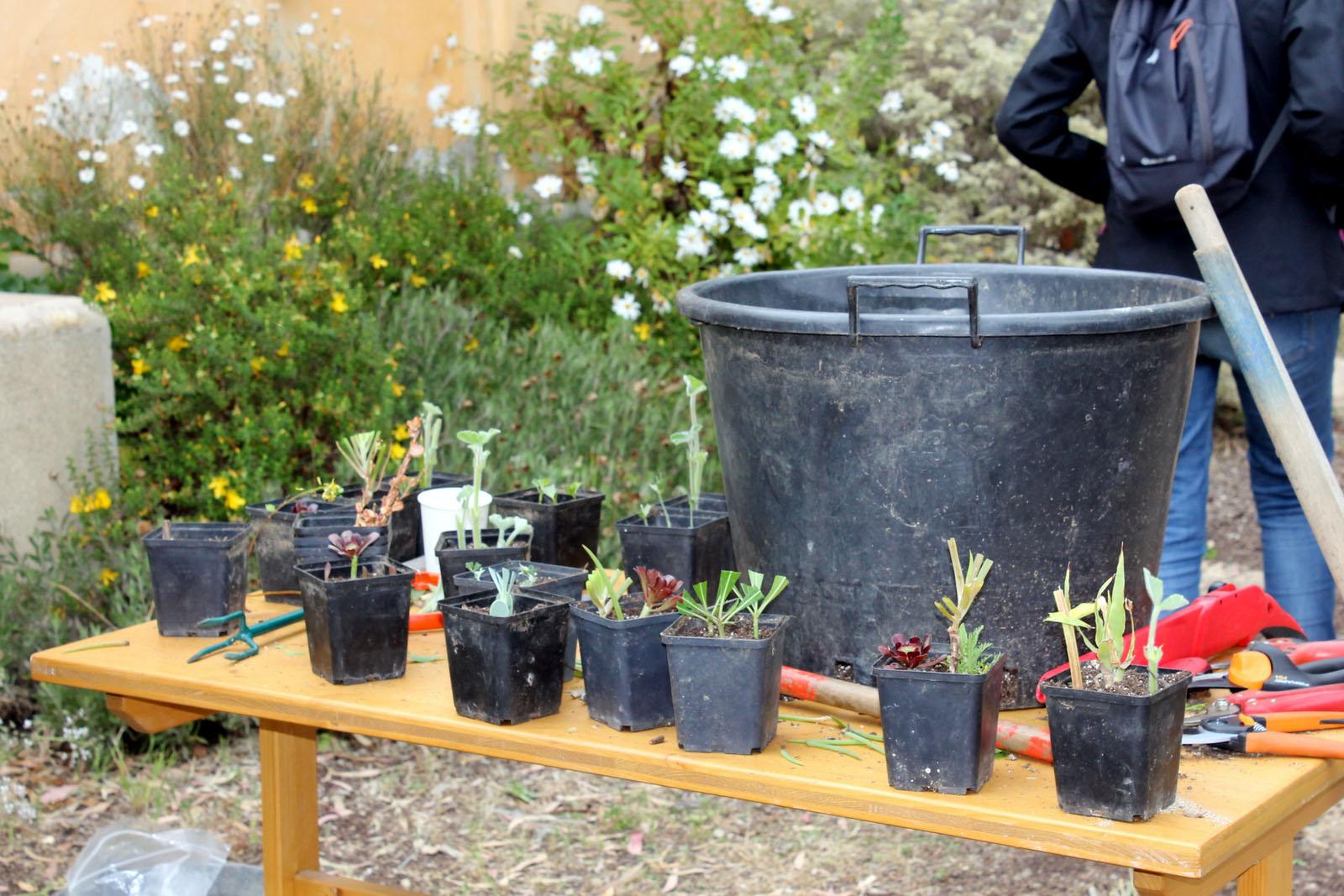 Abri de jardin carrefour for Le bon coin 23 jardinage