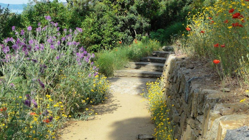 Le Jardin En Mouvement Domaine Du Rayol