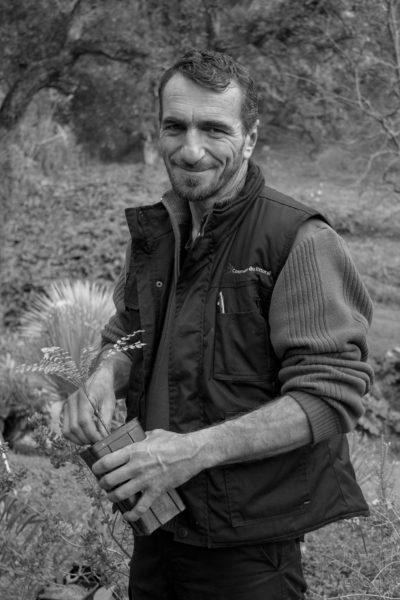 Laurent-AMALRIC-responsable-pépinière