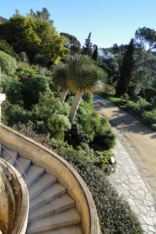 Le jardin en hiver domaine du rayol for Les jardins 4 saisons