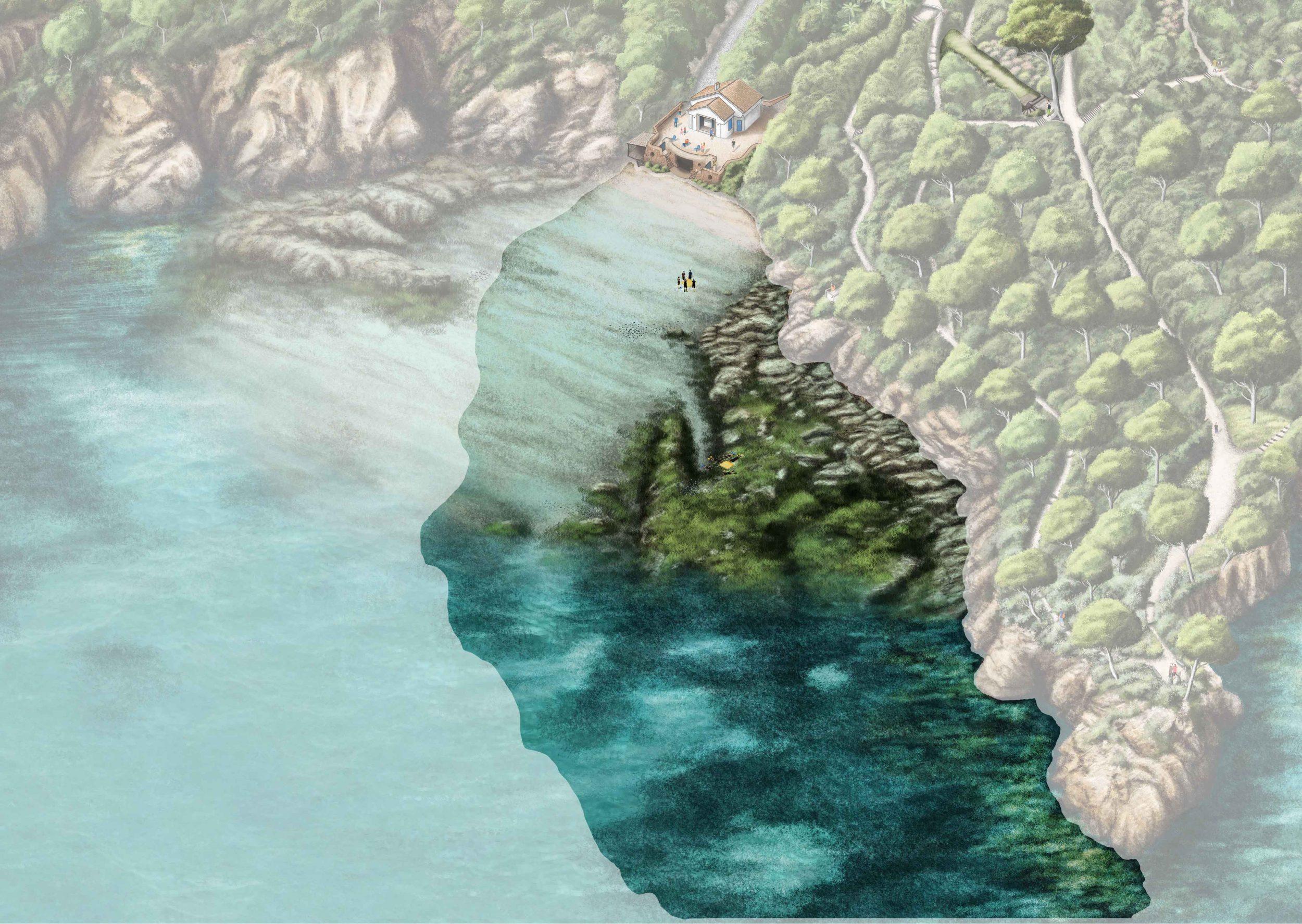 Détail des profondeurs du Jardin marin