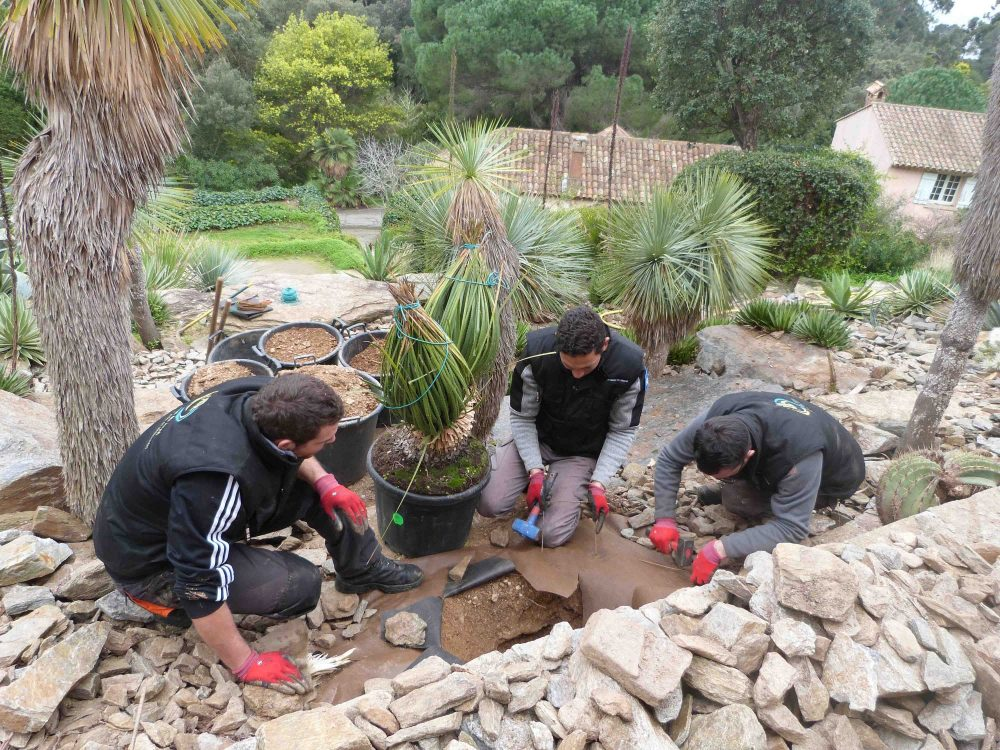 Le conseil des jardiniers : le temps des préparatifs au jardin