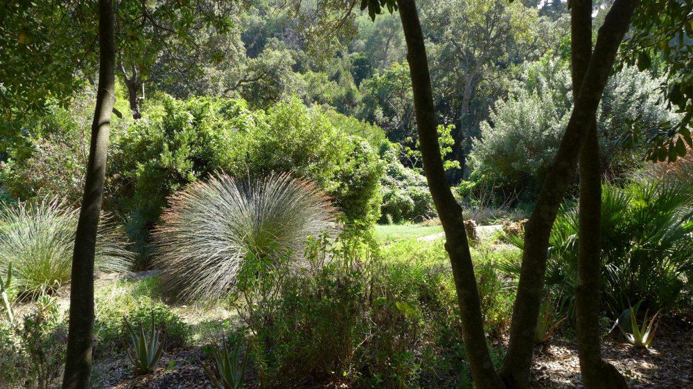 En ce moment au Jardin : les travaux d'automne