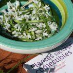 Formation La cuisine des plantes sauvages