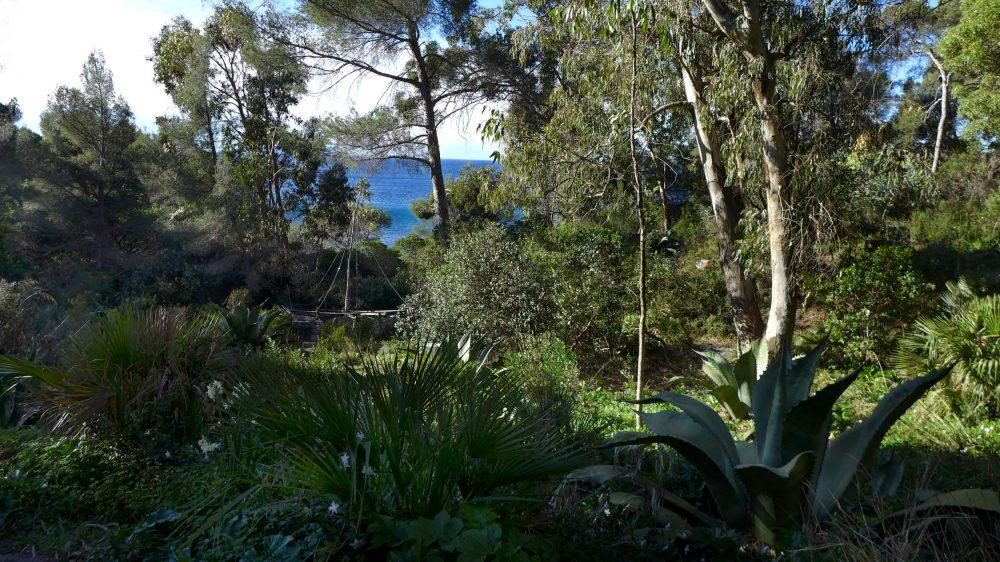 En ce moment au jardin :  dernières plantations et travail d'équipe