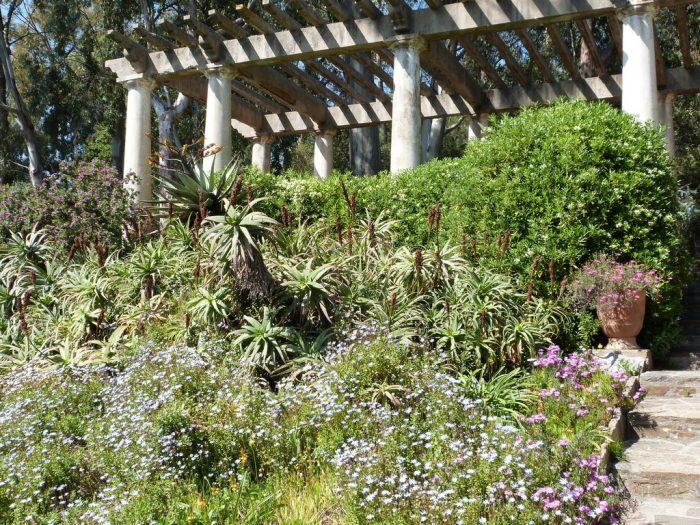 Floraisons multicolores au pied de la Pergola dans le jardin d'Afrique du Sud