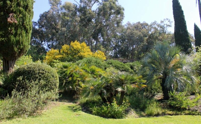 Jardin d'Amérique subtropicale