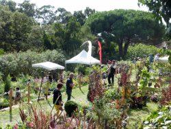 Gondwana, la Fête des Plantes méditerranéennes