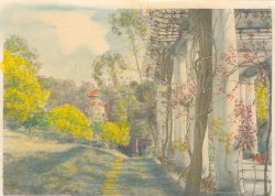 La pergola et les mimosas en fleur, le pigeonnier de la ferme (photo coloriée)