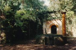 Le puits dans la parcelle d'Asie subtropicale, vers 1989