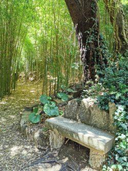 Jardin d'Asie subtropicale